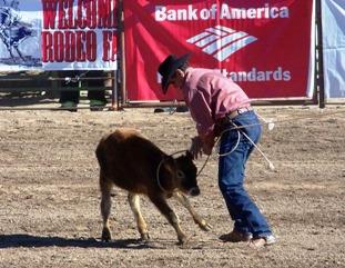 Rodeo Gold Rush 2008 Wickenburgnews Com